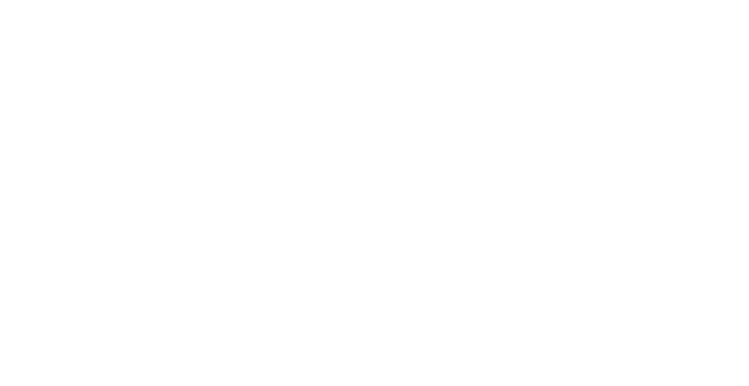 Digital Systems Engineering Inc.